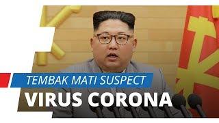 Kim Jong Un Tembak Mati Warganya yang Terindikasi Virus Corona, Ternya Karena Ini