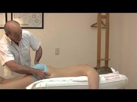 Joint Diarthrose