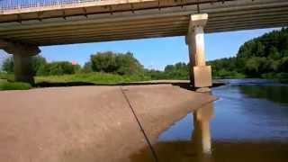 Кировская область река великая рыбалка