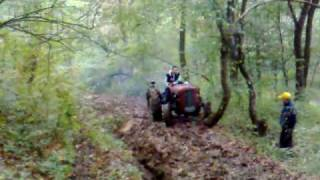 Traktor-IMT 542 vs IMT 533 vs Torpedo  4506-Pinosava Racing