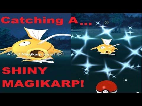 CATCHING A REAL SHINY MAGIKARP! POKEMON GO SHINY CATCH!