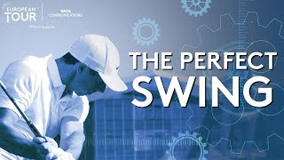 Does the perfect swing exist ?