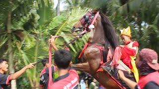 Karnaval Kuda Jingkak Keliling Kampung || Sambeng Pituruh