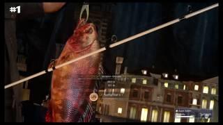 FINAL FANTASY XV--Chocobo Event Fishing Quotes
