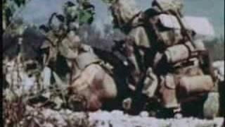 WW2 USMC IWO JIMA