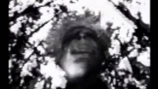 Sparklehorse - Pig (Official Video)