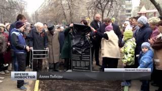 Аллею Победы из саженцев сирени высадили в Нижнем Новгороде