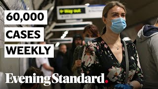 UK: 60,000 New Covid-19 Cases Weekly In England Official Statistics Say   Coronavirus