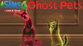 The Sims 4 Cats & Dogs: How to Add Ghost Pets to Your Household