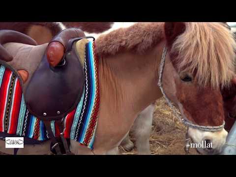 Vidéo de Pierre Durand