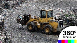 """Владельцам мусорного полигона """"Кучино"""" в Балашихе грозит до 5 лет лишения свободы"""