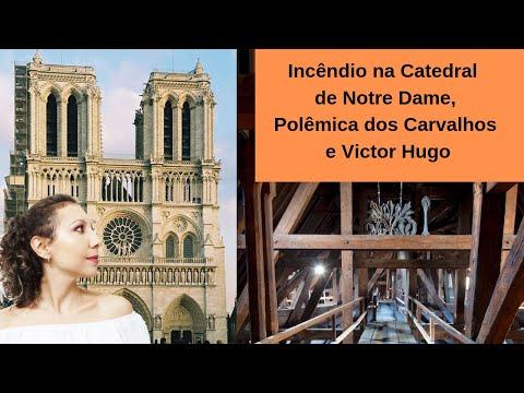 Incêndio na Catedral de Notre Dame, Polêmica dos Carvalhos e Victor Hugo