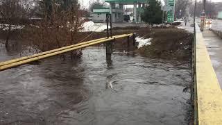 Потоп наводнение в городе Ахтырка 1 2 3 апреля 2018. Шутка от природы  превратилась в катастрофу