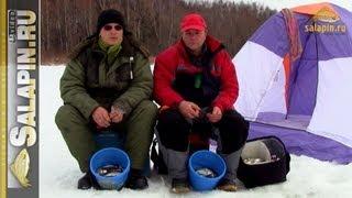 Когда ловить уклейку весной со льда