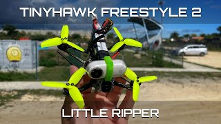 Tinyhawk Freestyle 2 beast mode! carrying insta360go like nothing. Great little FPV drone!