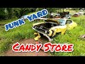 JUNKYARD LOADED WITH MUSCLE CARS, CLASSICS & MORE!