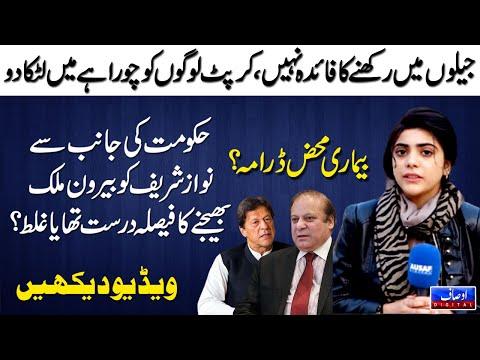 وزیر اعظم عمران خان نے نواز شریف کی بیماری پر شکوک و شبہات ڈالے