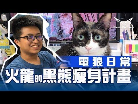 火龍vs電狼隊貓黑熊