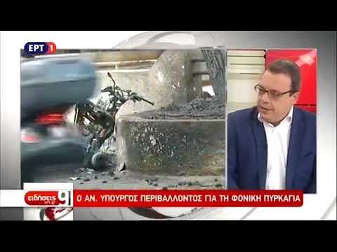 Σ. Φάμελλος στην ΕΡΤ: Θα κηρυχθεί αναδασωτέα η καμένη περιοχή