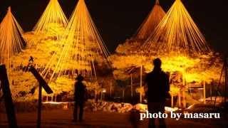 金沢城・兼六園ライトアップ~Kanazawacastle&Kenrokuenpark~