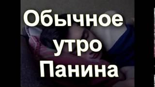ОБЫЧНОЕ УТРО ПАНИНА