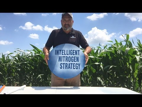Sustainable Farming and Nitrogen Management - Three Legs of the Nitrogen Stool
