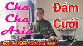 nhac-dam-cuoi-hay-nhat-lk-cha-cha-cha-tuyen-chon-nhac-hay-cho-dam-cuoi