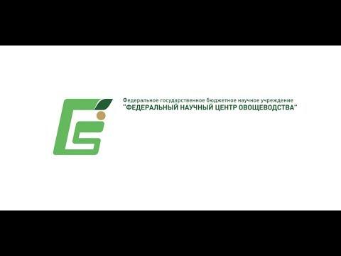 Современные научные достижения ФГБНУ «Федеральный научный центр овощеводства»