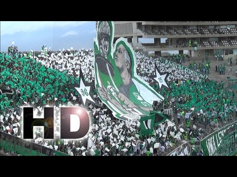 TIFO HOMENAJE AL PECOSO CASTRO - Deportivo Cali vs Junior 2-0 Liga Aguila 2016