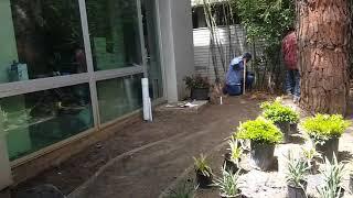 Garden Construction: The Best Order to Follow