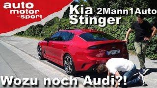 Kia Stinger - Wozu noch Audi?!   2Mann1Auto   auto motor und sport   Kholo.pk