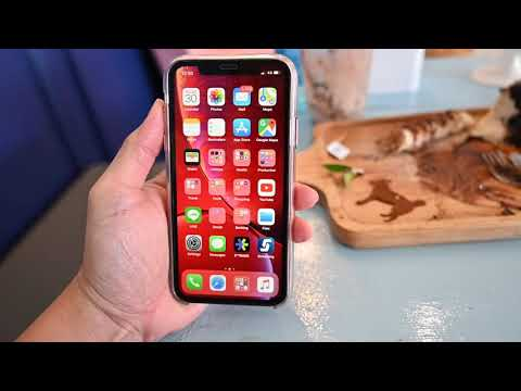 Download How To Use Siri Shortcuts Video 3GP Mp4 FLV HD Mp3 Download