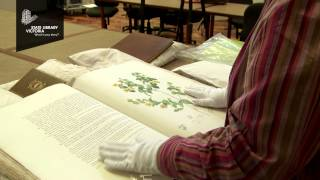 Jan McDonald On Botanical Books