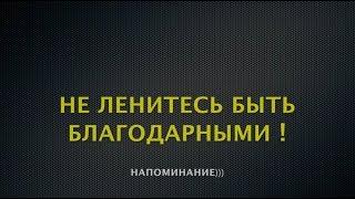Не ленитесь быть благодарными! Напоминание)))