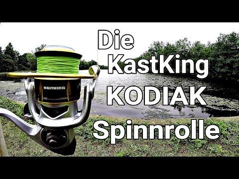 Die KastKing Kodiak - Spinnrolle Review auf DEUTSCH - Nach 8 Monaten und Grossen Fischen!