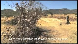 Ethiopian Videos Videos - Page 1103