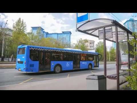 Можно ли объехать автобус через сплошную разметку?