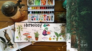 Herbology Botanical Illustration Inspired By Harry Potter🌿🍄📙