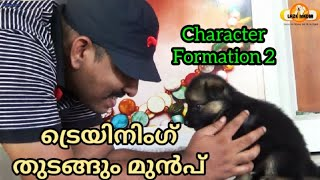 Pre-training Preperations : Character Formation : GSD puppy : LAZE MEDIA : Dog training malayalam