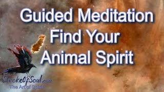 Updated Guided Meditation for Finding Your Animal Spirit