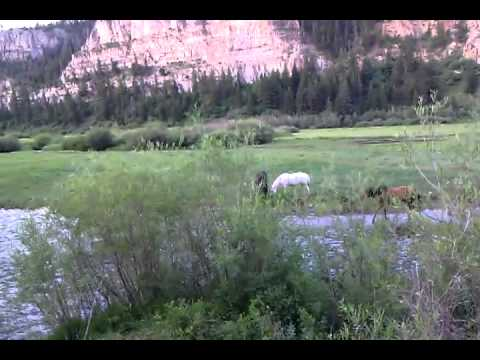 video 0 - A.J. Brink Outfitters gallery