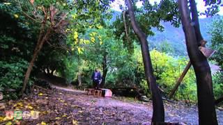 مسلسل ضيعة ضايعة - الجزء الثاني ـ الحلقة 19 التاسعة عشر كاملة HD ـ سر المهنة