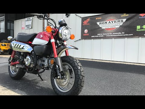 2020 Honda Monkey in Greenville, North Carolina - Video 1