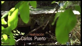 Video del alojamiento Balcón de Nut I y II