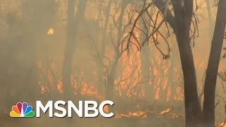 What Changes Need To Happen Now For Climate Change | Velshi & Ruhle | MSNBC