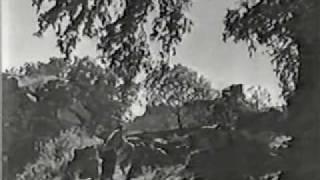 Hyderabad Ki Nazneen - Duniya Mein Jeena Hi Padega II