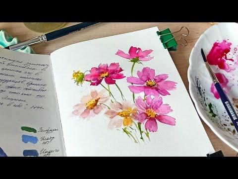 Как быстро нарисовать цветы. Скетч Космеи с натуры.