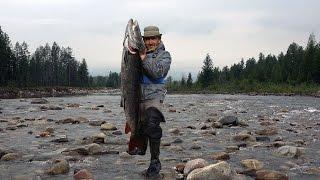 Рыбалка на оно не забайкальского края