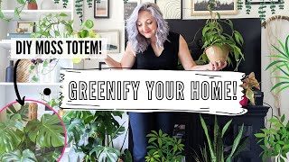 How To Care For Indoor Plants + Greenify You Home!   DIY, Tips And Tricks