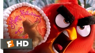 Angry Birds   The Angry Bird Scene (110)   Movieclips